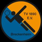 TV_Breckenheim_Logo-Handball